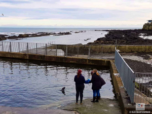 St. Andrews Aquarium Seal Enclosure and Sea Front