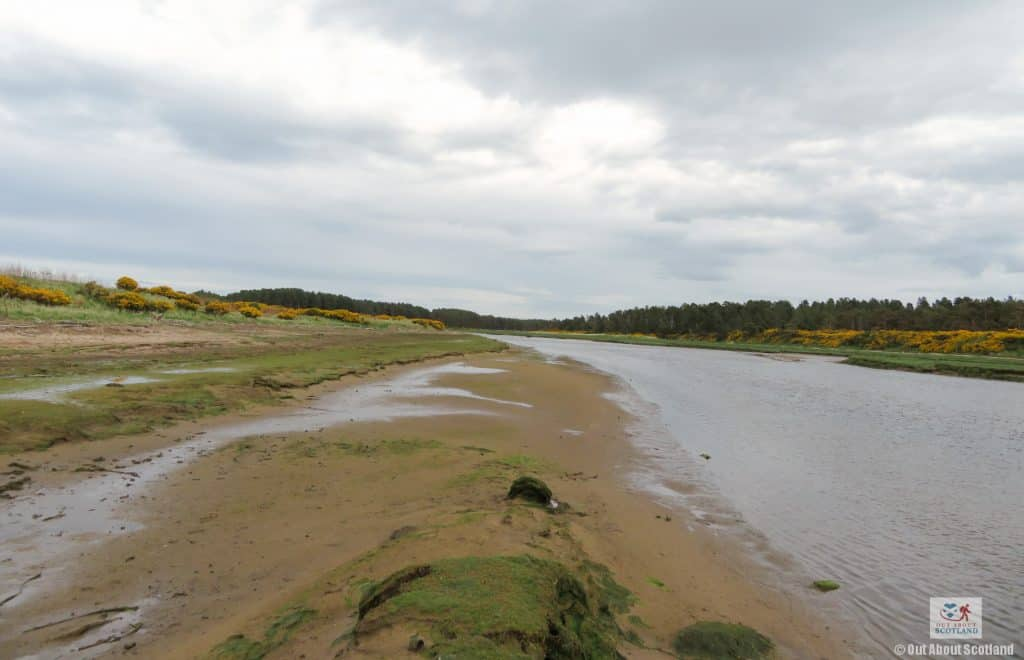 Lossiemouth East Beach (16 of 16)