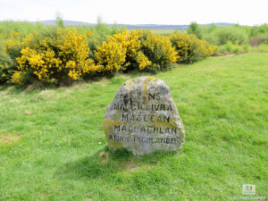 Culloden Battlefield (6 of 10)