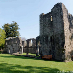 Inchmahome Priory (16 of 19)