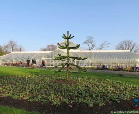 A Guide To: Glasgow Botanic Gardens