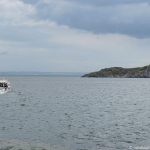 Bass Rock Boat Tour (5 of 5)