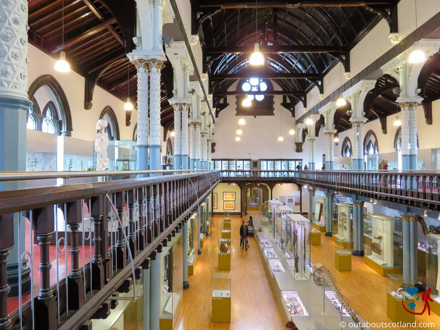 The Hunterian Museum (15 of 17)