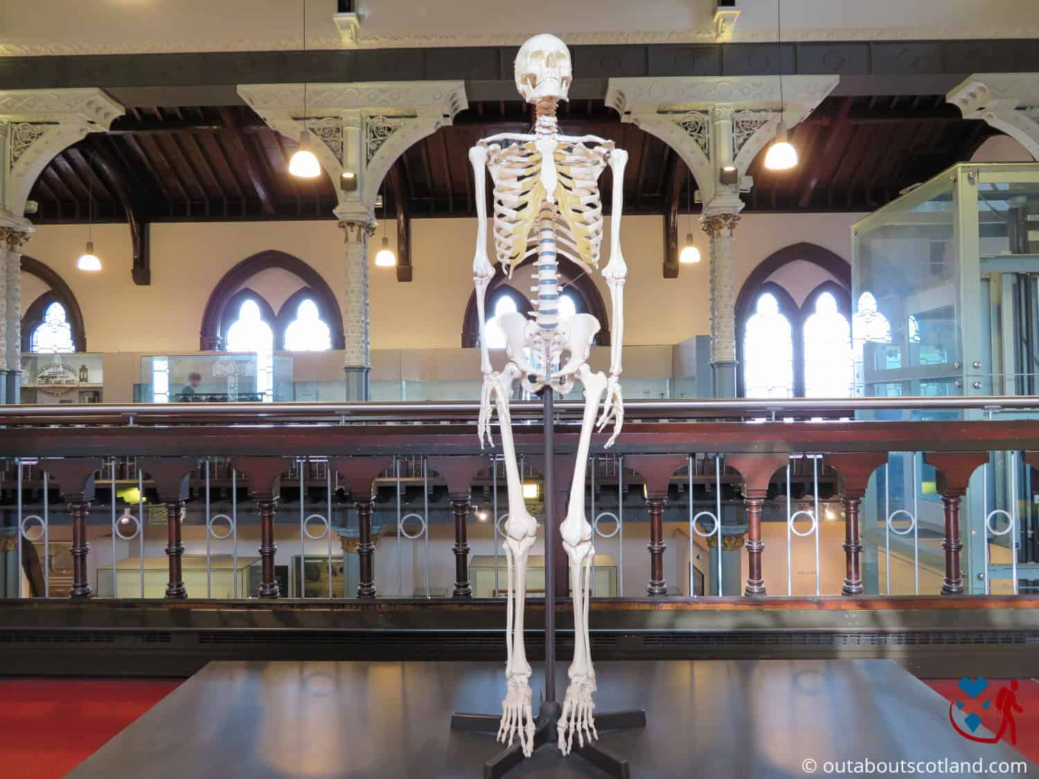 The Hunterian Museum (16 of 17)