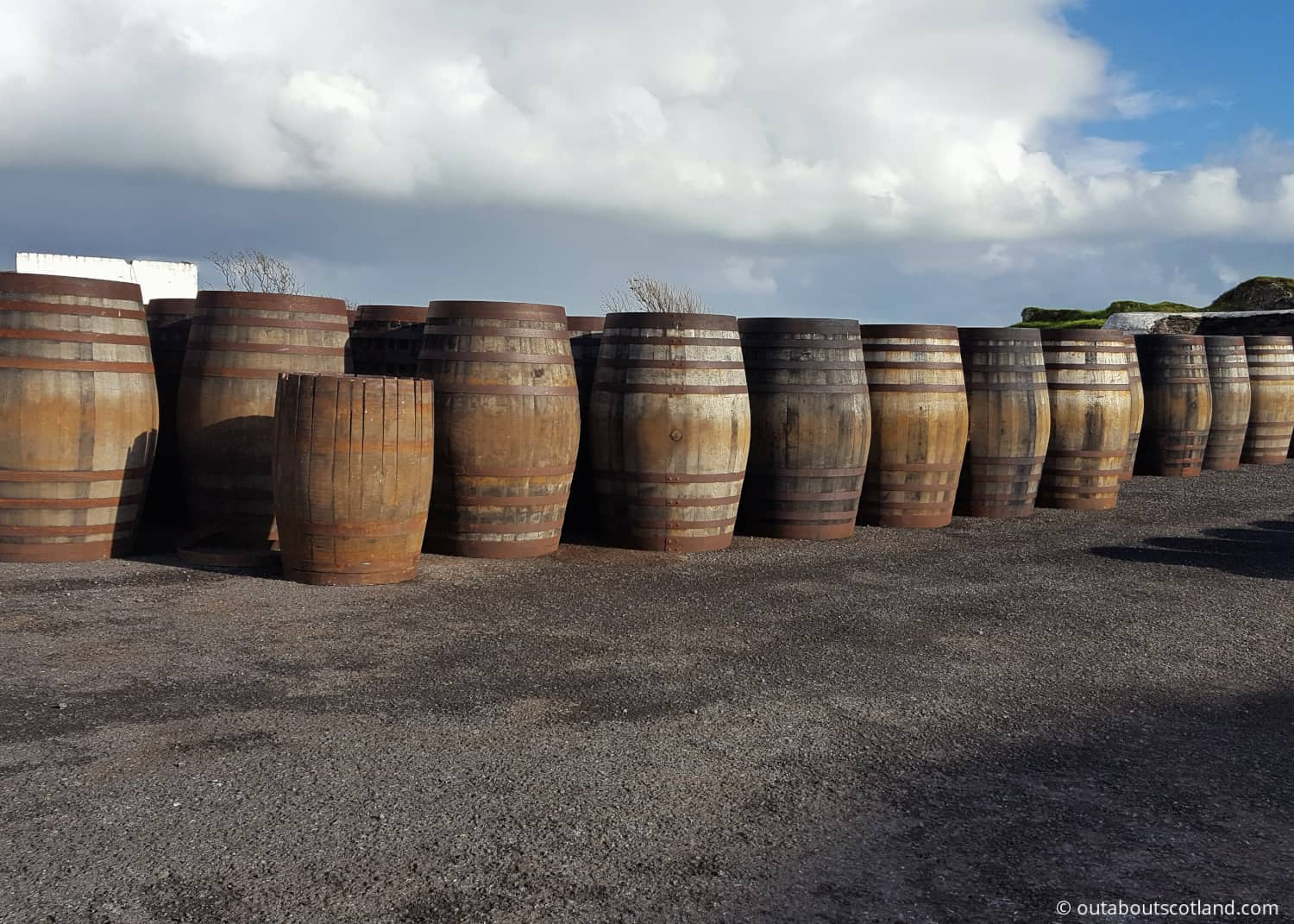 islay whisky barrels